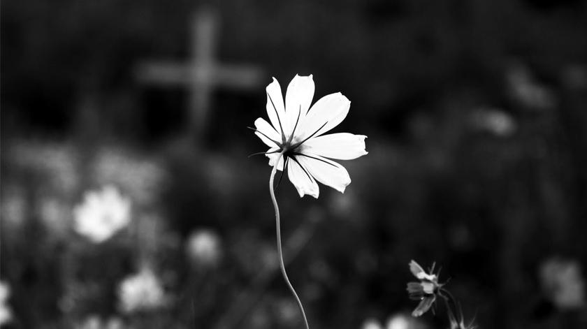 A importância da morte com dignidade