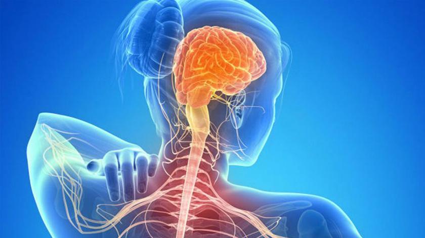 Guias de aprendizagem para pessoas com esclerose múltipla e cuidadores