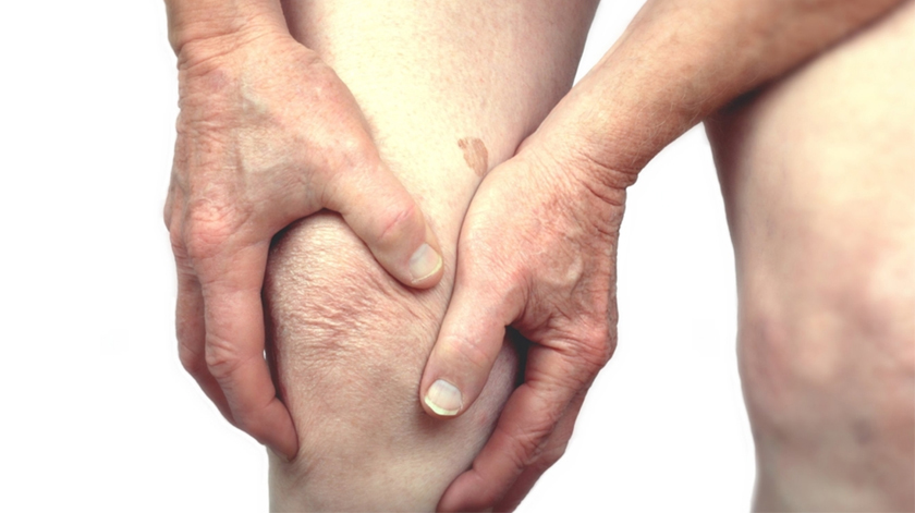 Investigadores da UC premiados por medicamento para combater osteoartrose