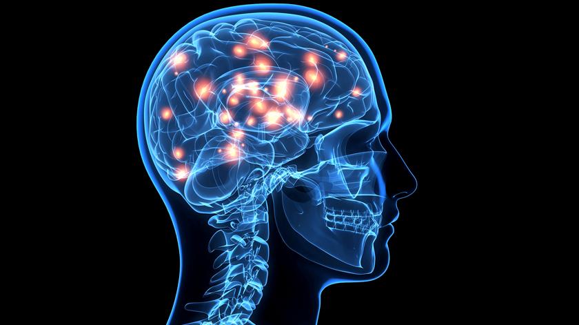 Prémio João Lobo Antunes atribuído a estudo sobre doentes com Parkinson