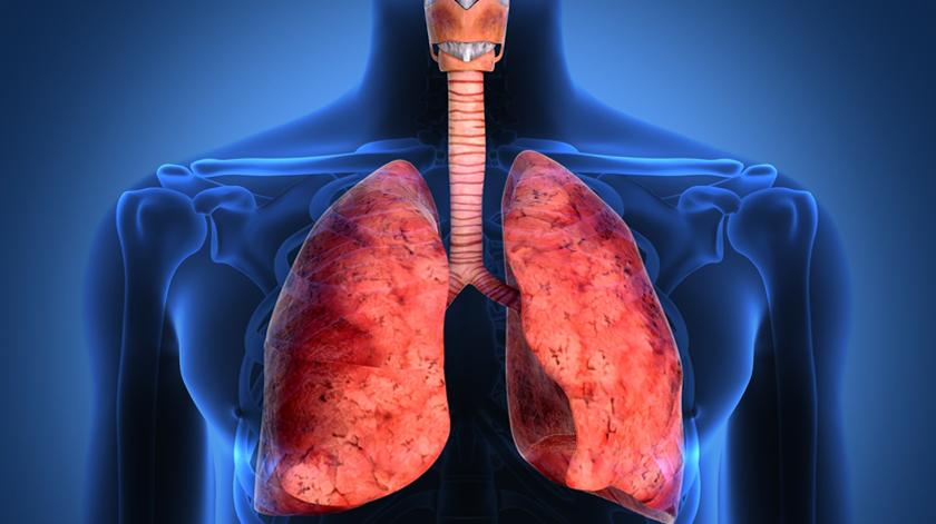 EDP Solidária disponibiliza um milhão de euros para doenças respiratórias