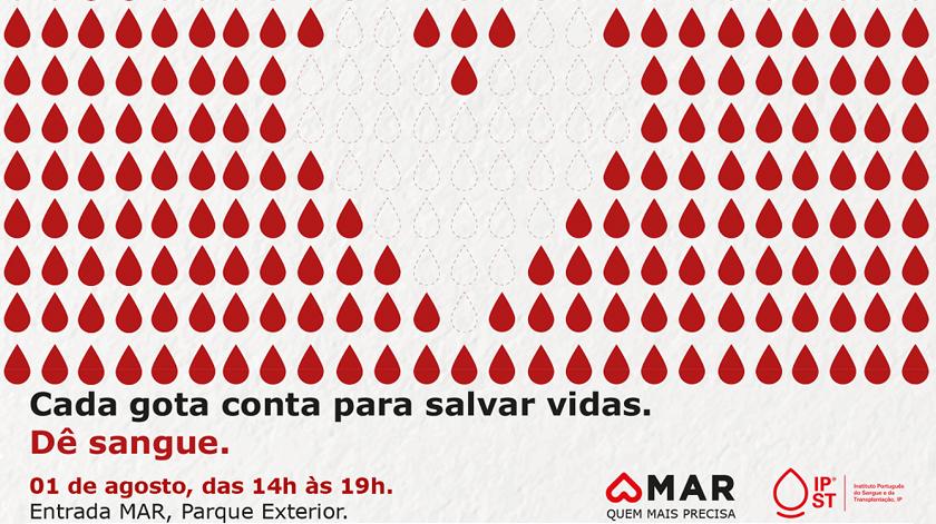 Instituto do sangue pede renovação de dadores