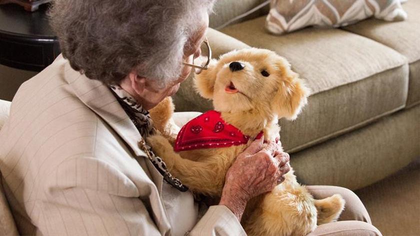 Pets robots para evitar a solidão dos idosos