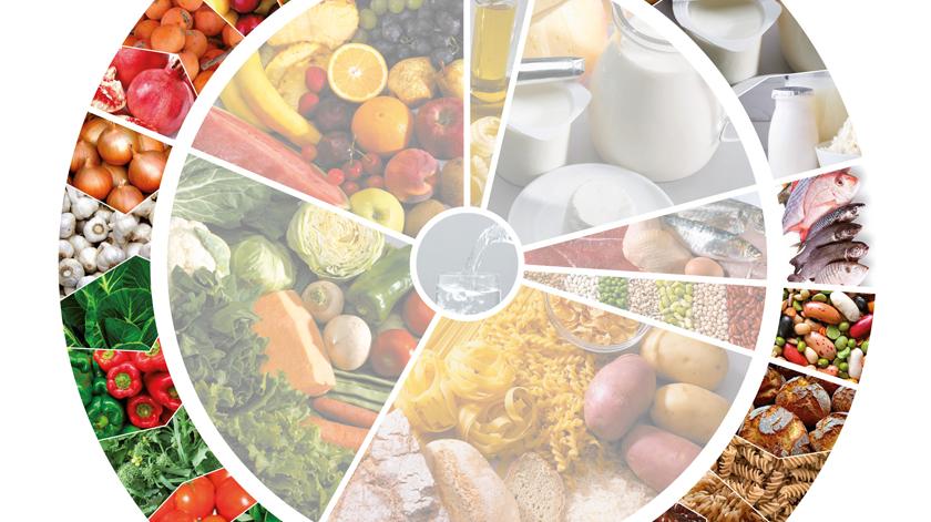 Roda dos Alimentos e rotulagem nutricional revistas em 2020