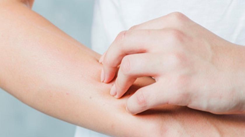 Novo órgão na pele que deteta a dor