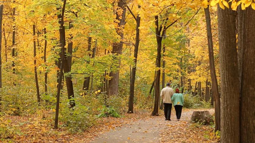 Cuidados a ter com os idosos no Outono