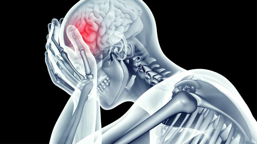 Sociedade Portuguesa do AVC promove investigação em doença vascular cerebral