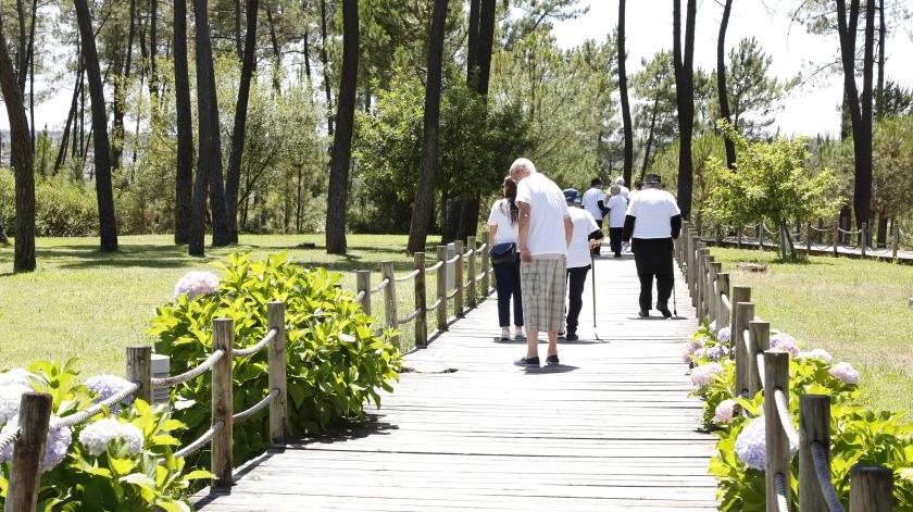 Projeto + Vida põe idosos a mexer em Abrantes