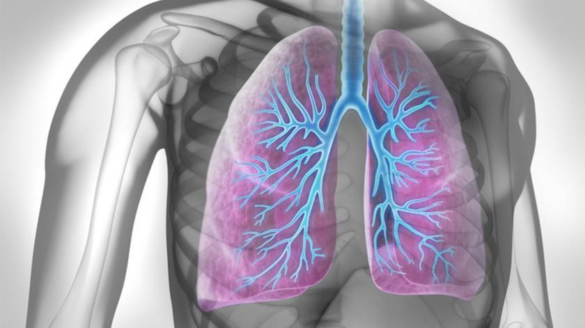 Apresentada iniciativa que quer fazer frente ao cancro do pulmão