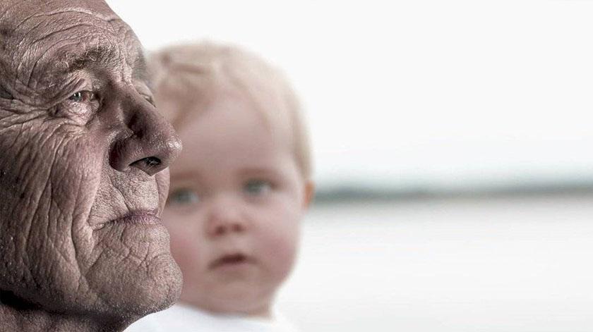 """Proteína """"antienvelhecimento"""" que atrasa crescimento celular é fundamental na longevidade"""