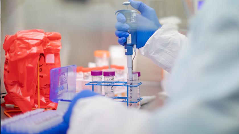 Covid-19: Investigadores avaliam rejuvenescimento das células estaminais de idosos infetados