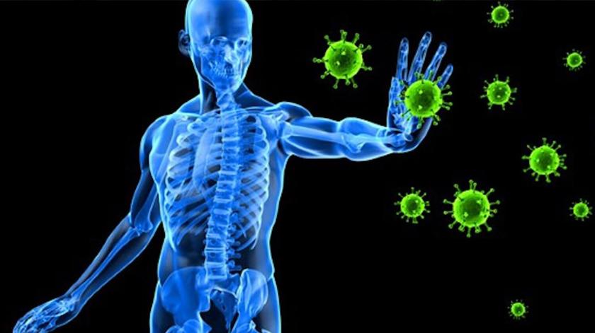 Proteja o seu escudo imunitário. 10 medidas simples que ajudam a fortalecer as defesas naturais