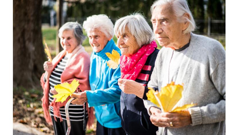 Município de Faro integra rede regional de investigação sobre o envelhecimento