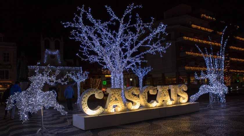 Covid-19: Cascais ajuda idosos a passar o Natal em família
