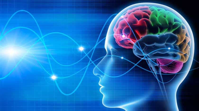 Cem instituições subscrevem declaração para investigação em neurociências mais justa e inclusiva