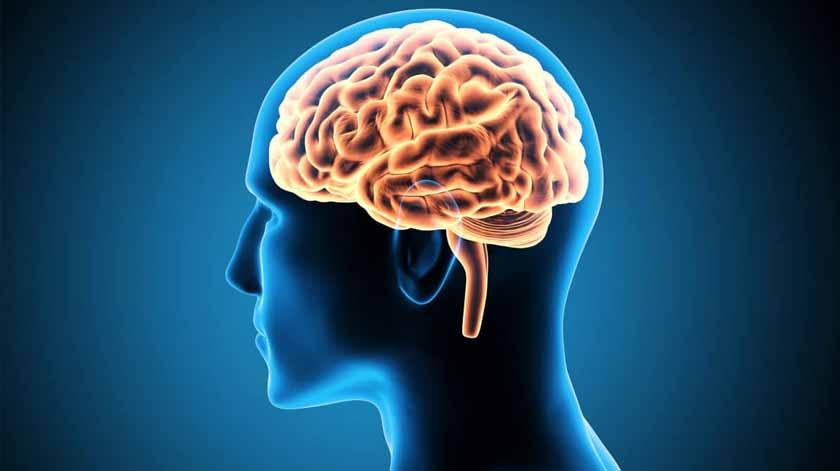 Estudo global vai examinar como a Covid-19 afeta o cérebro
