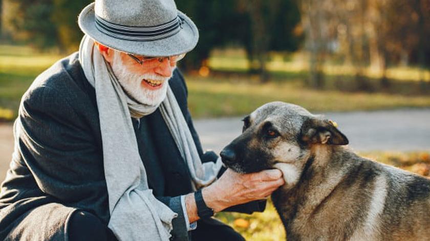 Cão incentiva vida ativa no idoso