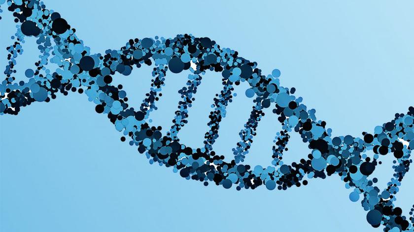 Teste genético português analisa genes para construir plano de vida saudável