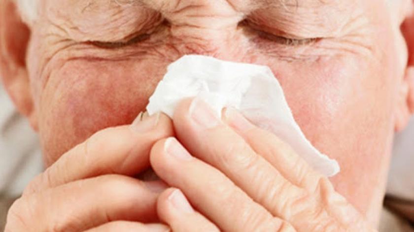 Promover tolerância a alergias