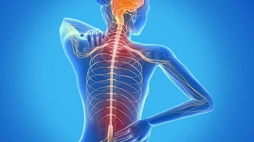 Sociedade de Esclerose Múltipla quer estatuto do doente crónico