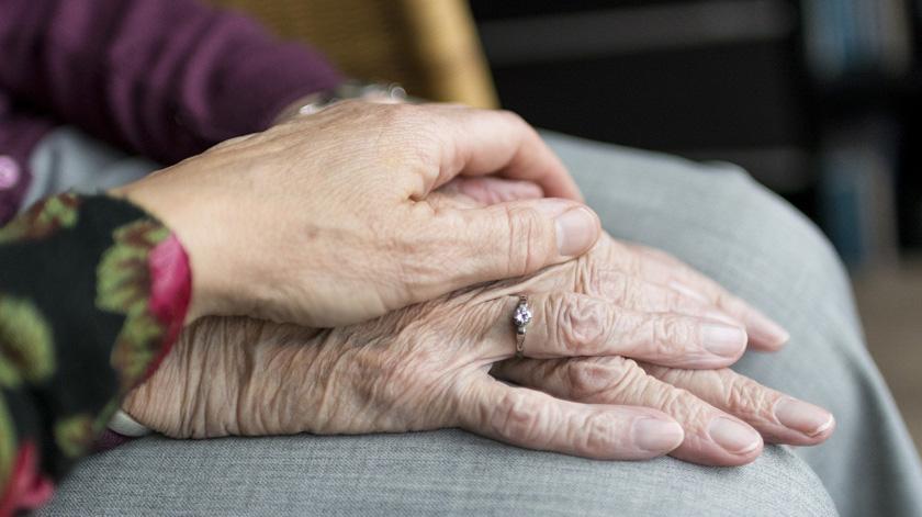 Investigadoras defendem plano de recuperação para os lares