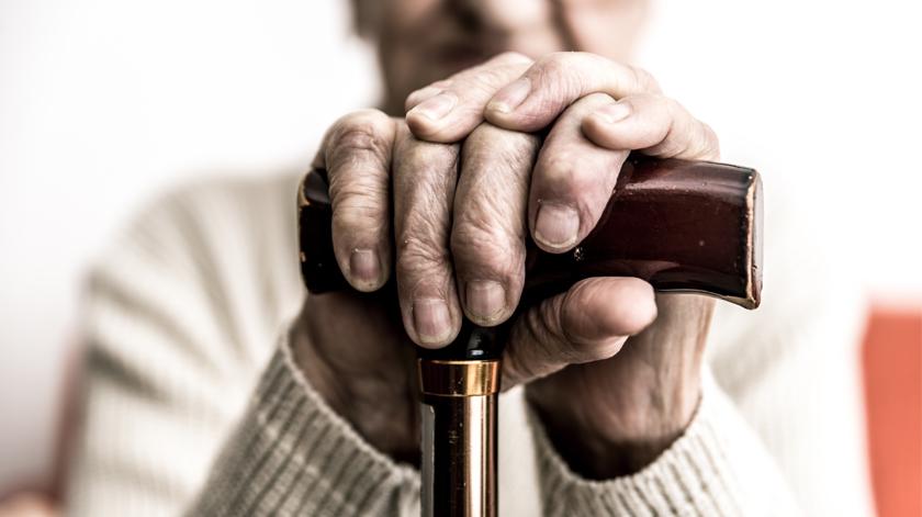 Rede Portuguesa de Envelhecimento Ativo e Saudável entrega Plano de Ação ao Governo
