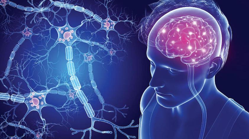 Esclerose múltipla debatida em Coimbra na celebração do Dia Mundial do Cérebro